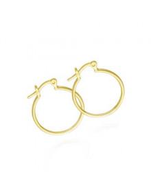 Brincos de Argola Pequenos Banhados a Ouro 18k - Brincos da Moda Femininos
